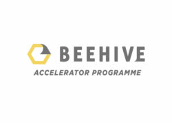 BEEHIVE STARTUP ACCELERATOR PROGRAMME 2019